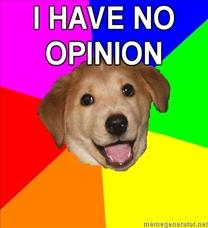 22.void hate opinions pic