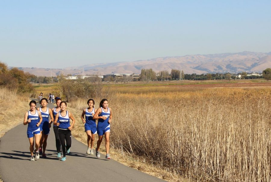 Irvington%E2%80%99s+Cross+Country+Varsity+Girls+warming+up+to+race+against+Kennedy.+
