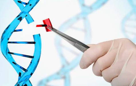 A CRISP(R) Look At Genomics