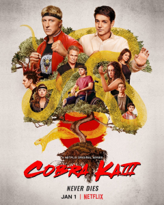 Cobra Kai Season 3 Review